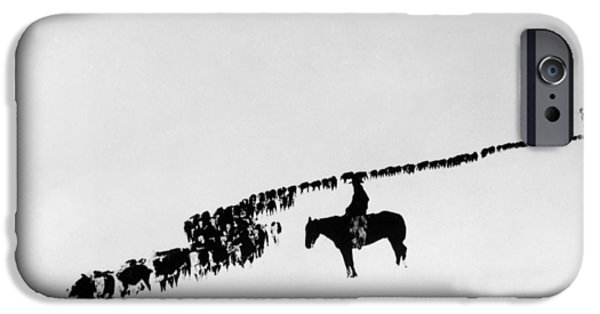 Horse iPhone 6s Case - Wyoming: Cattle, C1920 by Granger