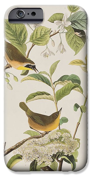 Yellow-breasted Warbler IPhone 6s Case by John James Audubon