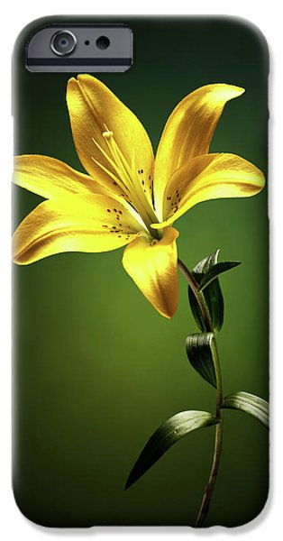 Lily iPhone 6s Case - Yellow Lilly With Stem by Johan Swanepoel