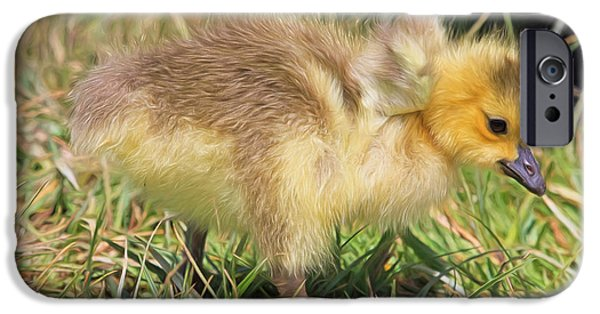 Gosling iPhone 6s Case - Yes I Do Have Wings by Donna Kennedy