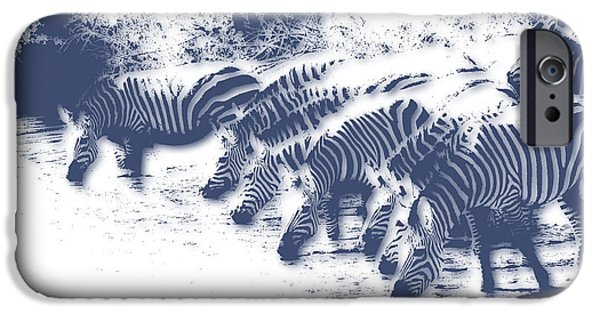 Zebra 3 IPhone 6s Case by Joe Hamilton