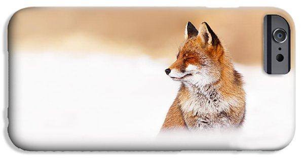 Zen Fox Series - Zen Fox In Winter Mood IPhone 6s Case by Roeselien Raimond