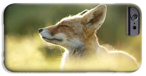 Zen Fox Series - Zen Fox Up Close IPhone 6s Case