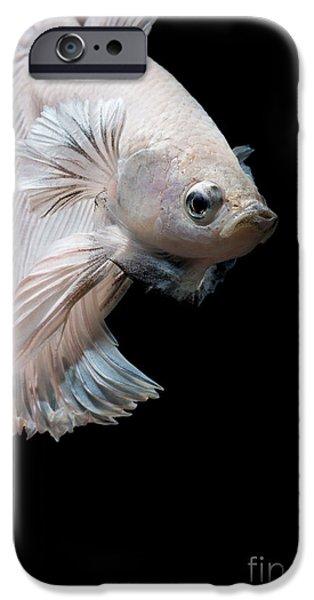 Aquarium iPhone 6s Case - Betta Fish,siamese Fighting Fish In by Nuamfolio