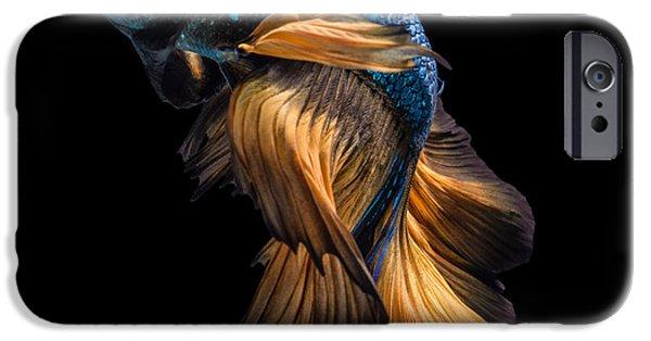 Aquarium iPhone 6s Case - Colourful Betta Fish,siamese Fighting by Nuamfolio
