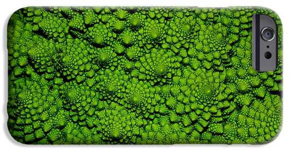 Fractal iPhone 6s Case - A Green Cabbage Closeup by Ziche77