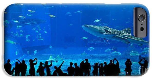 Aquarium iPhone 6s Case - Aquarium In Okinawa by Leungchopan