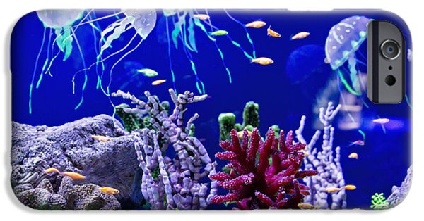 Aquarium iPhone 6s Case - Beautiful Jellyfish, Medusa In The Neon by Dezay