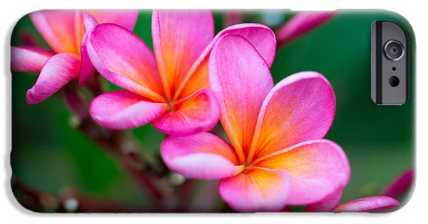 Perfume iPhone 6s Case - Branch Of Tropical Pink Flowers by Iryna Rasko