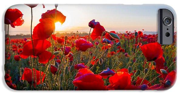 Scarlet iPhone 6s Case - Early Morning Red Poppy Field Scene by Yuriy Kulik