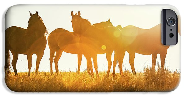 Horse iPhone 6s Case - Equine Glow by Todd Klassy