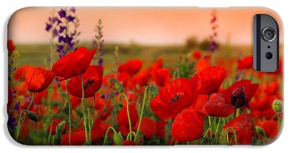 Scarlet iPhone 6s Case - Field Of Poppies On A Sunset by Zeljko Radojko
