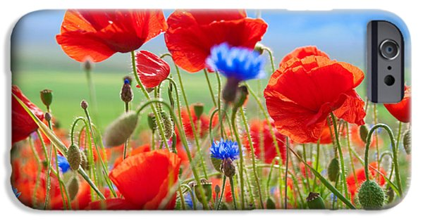 Scarlet iPhone 6s Case - Field Of Wild Poppies And Other Flowers by Maria Uspenskaya