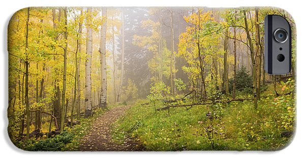 New Leaf iPhone 6s Case - Foggy Winsor Trail Aspens In Autumn 2 - Santa Fe National Forest New Mexico by Brian Harig