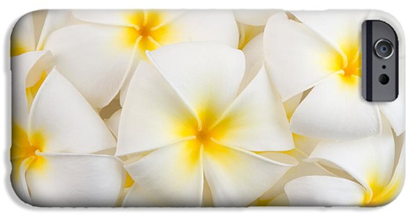 Perfume iPhone 6s Case - Frangipani Spa Flowers Background by Piyaset