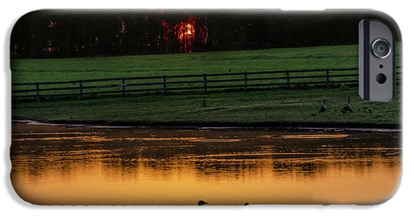 Gosling iPhone 6s Case - Gettysburg Pennsylvania - Sunrise On A Duck Pond by Bill Cannon