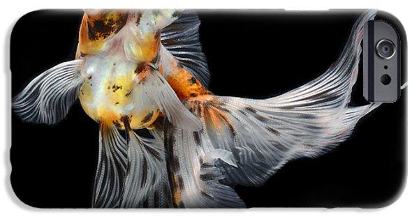 Aquarium iPhone 6s Case - Goldfish Isolated On Black Background by Bluehand