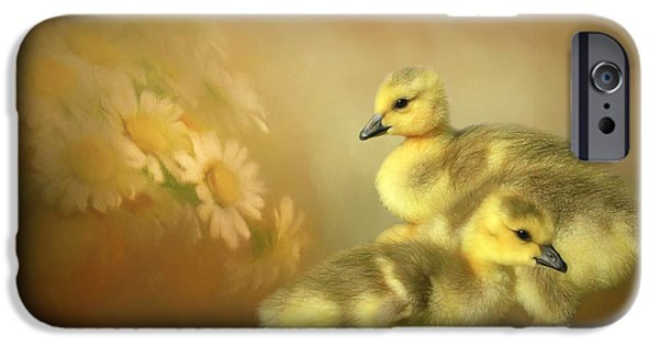 Gosling iPhone 6s Case - Goslings And Daisies by Donna Kennedy