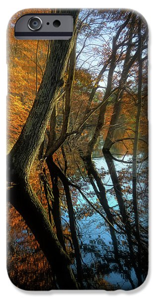 New Leaf iPhone 6s Case - In Arcadia by Jerry LoFaro