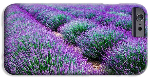 Perfume iPhone 6s Case - Lavender Field by Edler Von Rabenstein