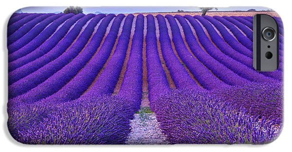 Perfume iPhone 6s Case - Lavender Field Summer Sunset Landscape by Fesus Robert