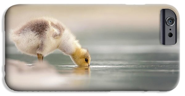 Gosling iPhone 6s Case - Lost Something? - Drinking Gosling by Roeselien Raimond