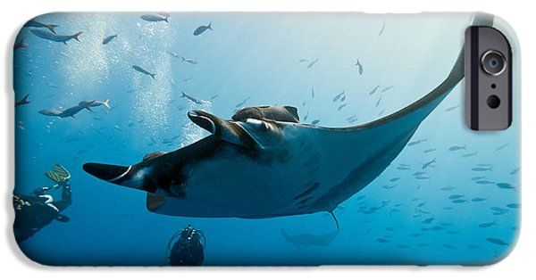 Scuba Diver iPhone 6s Case - Manta And Diver On The Blue Background by Krzysztof Odziomek