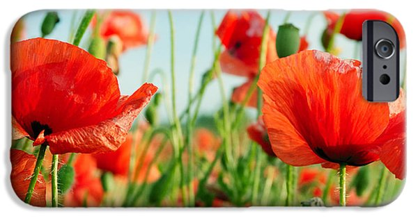Scarlet iPhone 6s Case - Poppies On Green Field by Serg64