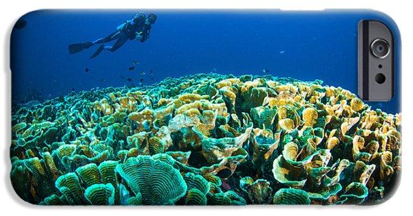 Scuba Diver iPhone 6s Case - Scuba Diving Above Coral Below Boat by Fenkieandreas