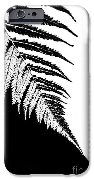 New Leaf iPhone 6s Case - Silver Fern by Evelina Kremsdorf