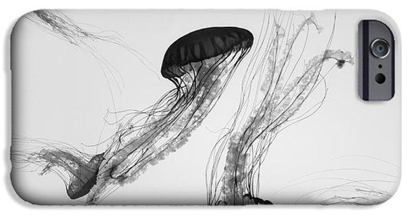 Aquarium iPhone 6s Case - Underwater View Of Jellyfish by Christopher Gardiner
