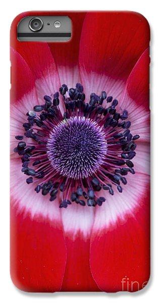 Scarlet iPhone 6s Plus Case -  Anemone Coronaria Harmony Scarlet Flower by Tim Gainey