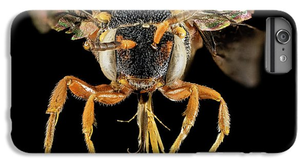Cuckoo iPhone 6s Plus Case - Cuckoo Bee by Us Geological Survey