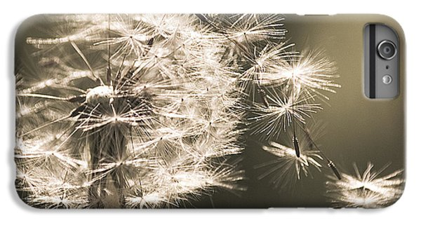 Dandelion IPhone 6s Plus Case by Yulia Kazansky