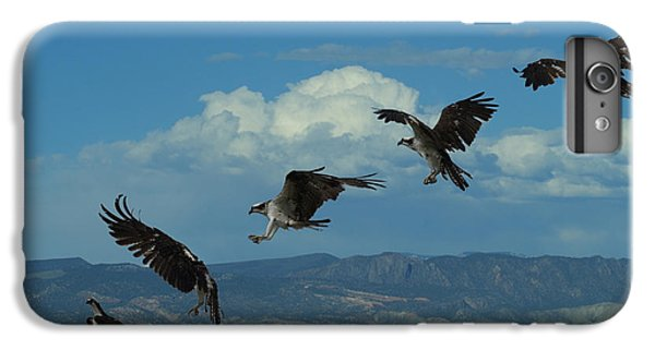 Landing Pattern Of The Osprey IPhone 6s Plus Case by Ernie Echols
