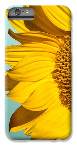 Sunflower iPhone 6s Plus Case - Sunflower by Mark Ashkenazi
