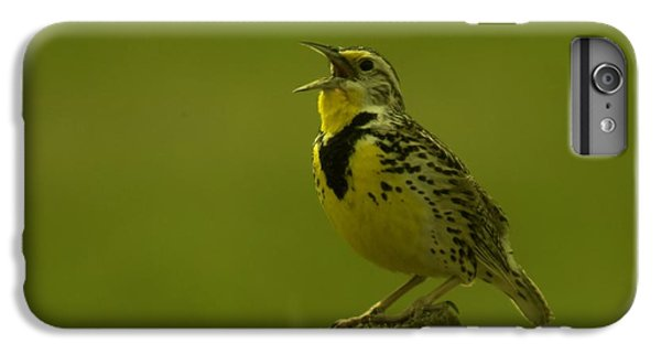The Meadowlark Sings IPhone 6s Plus Case by Jeff Swan