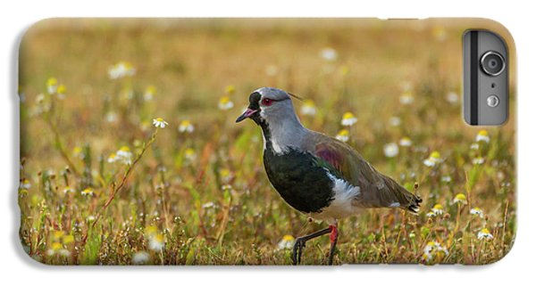 Lapwing iPhone 6s Plus Case - South America, Chile, Patagonia, Torres by Jaynes Gallery