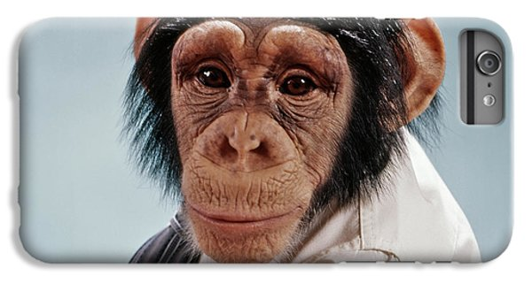 1970s Close-up Face Chimpanzee Looking IPhone 6s Plus Case