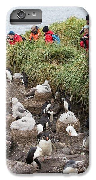 A Black Browed Albatross IPhone 6s Plus Case