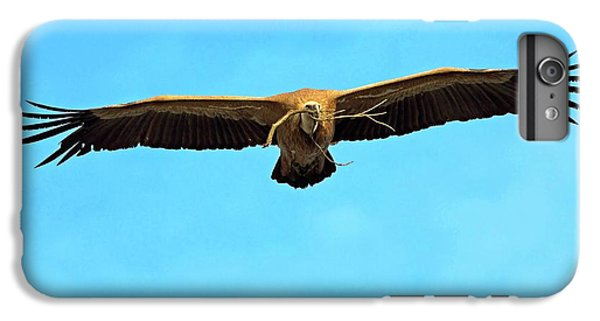 Griffon Vulture In Flight IPhone 6s Plus Case by Bildagentur-online/mcphoto-schaef
