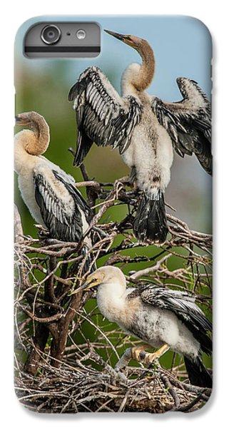 Anhinga iPhone 6s Plus Case - Usa, Florida, Green Cay, Wakodahatchee by Jaynes Gallery
