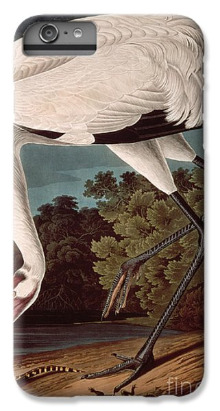 Whooping Crane IPhone 6s Plus Case by John James Audubon