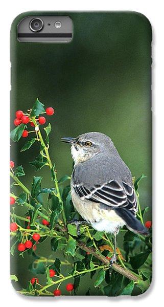 Mockingbird iPhone 6s Plus Case - Northern Mockingbird (mimus Polyglottos by Richard and Susan Day