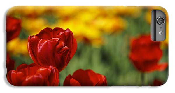 Tulip iPhone 6s Plus Case - Red And Yellow Tulips by Nailia Schwarz