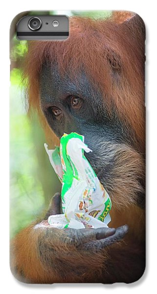 Sumatran Orangutan IPhone 6s Plus Case by Scubazoo