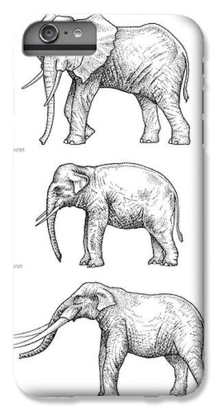 Elephant Evolution, Artwork IPhone 6s Plus Case by Gary Hincks