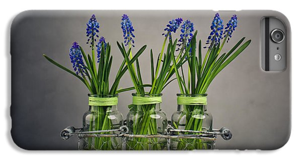 Hyacinth Still Life IPhone 6s Plus Case by Nailia Schwarz