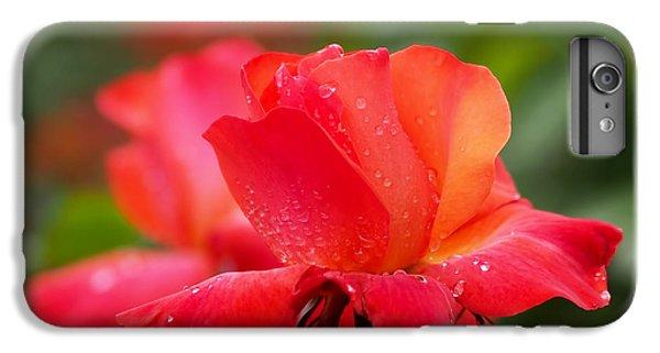 A Tintinara Rose In The Rain IPhone 6s Plus Case