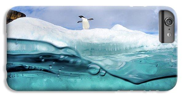 Penguin iPhone 6s Plus Case - Adelie Penguin On Iceberg by Justin Hofman